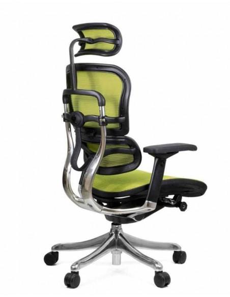 Кресло компьютерное ERGOHUMAN PLUS, эргономичное, зеленого цвета