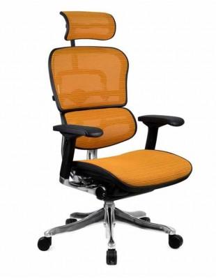 Кресло компьютерное ERGOHUMAN PLUS, эргономичное, оранжевого цвета