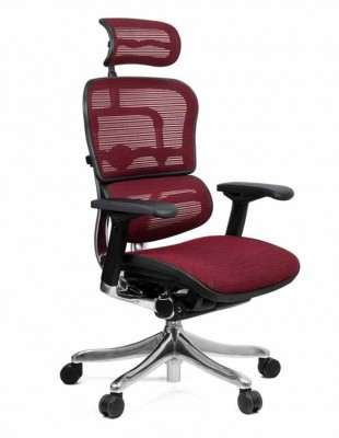 Кресло компьютерное ERGOHUMAN PLUS, эргономичное, бордового цвета